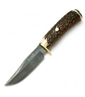 Braco hunting knife, stag horn handle
